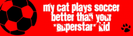 Bumper Sticker - My Cat Is Better Than Your Kid