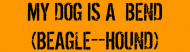 Bumper Sticker - My Dog Is A Bend Beagle Hound