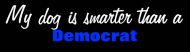 Bumper Sticker - My Dog Is Smarter Than A Democrat
