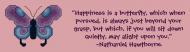 Bumper Sticker - Nathaniel Hawthorne