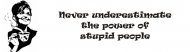 Bumper Sticker - Never Underestimate The Power Of Stupid People