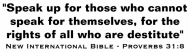 Bumper Sticker - New International Bible Verse Proverbs 31 8