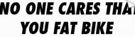 Bumper Sticker - No One Cares That You Fat Bike