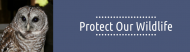 Bumper Sticker - Protect Our Wildlife