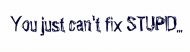 Bumper Sticker - You Just Cant Fix