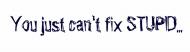 Bumper Sticker - You Just Cant Fix