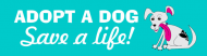Bumper Sticker - Adopt A Puppy Dog Save A Life Be A Hero