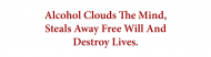 Bumper Sticker - Alcohol Clouds The Mind Destroys Lives