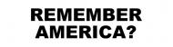 Bumper Sticker - Anti Obama Remember America Funny Political