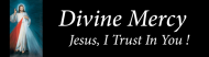 Bumper Sticker - Divine Mercy Jesus I Trust In You