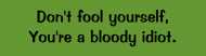 Bumper Sticker - Dont Fool Yourself Youre A Bloody Idiot