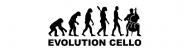Bumper Sticker - Evolution Cello