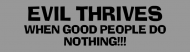 Bumper Sticker - Evil Thrives When Good People Do Nothing 6