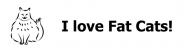 Bumper Sticker - I Love Fat Cats