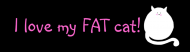 Bumper Sticker - I Love My Fat Cat