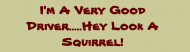 Bumper Sticker - Im A Very Good Driver Hey Look A Squirrel