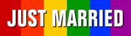 Bumper Sticker - Just Married Gay