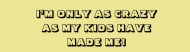 Bumper Sticker - Kids Made Me Crazy