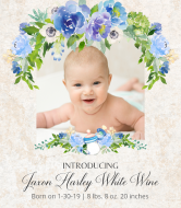 Baby Wine Label - Introducing Baby Boy