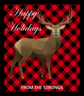 Holiday Wine Label - Buffalo Plaid